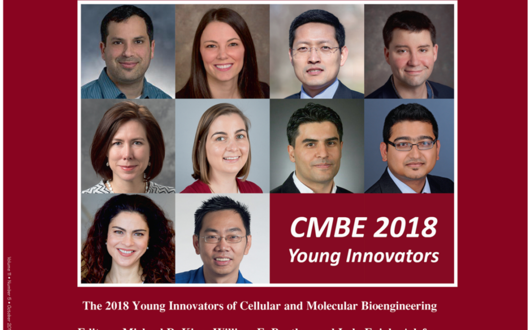 Dr  Mehdi Nikkhah wins CMBE Young Innovators award - School
