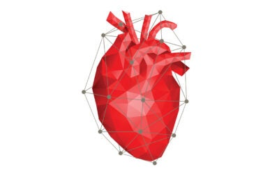 ASU engineers get to the heart of organs-on-a-chip